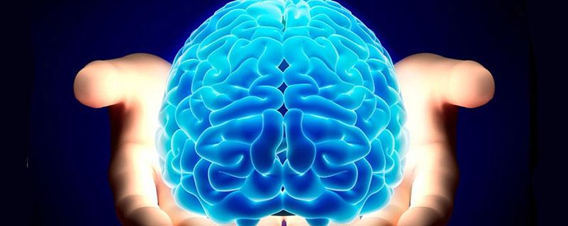 fiche metier neurobiologiste